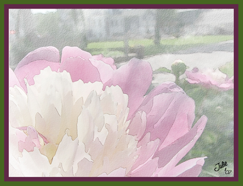 peonies watercolor.jpg