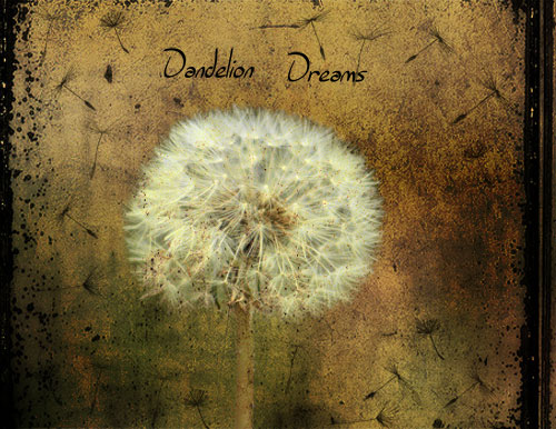 dandelion-dreams-copy.jpg